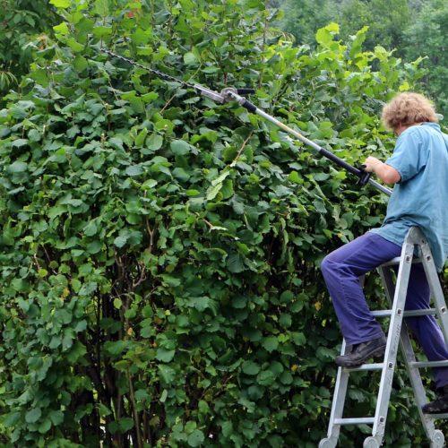 Najpopularniejsze maszyny ogrodowe