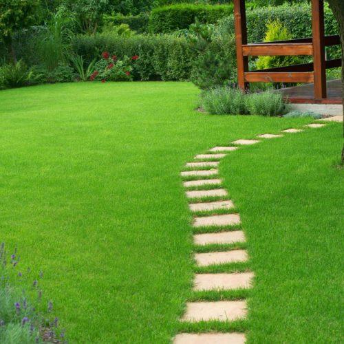 Zakładanie i pielęgnacja trawników