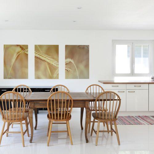 Obrazy do kuchni – hit czy kit?