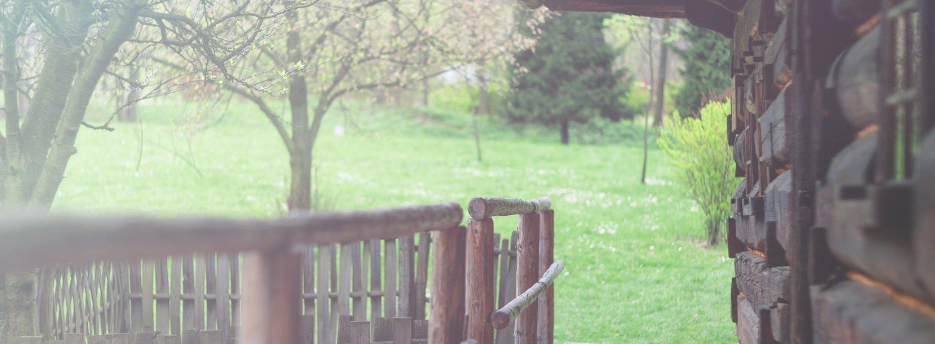 Jak zaprojektować ogród? 5 najciekawszych rozwiązań!